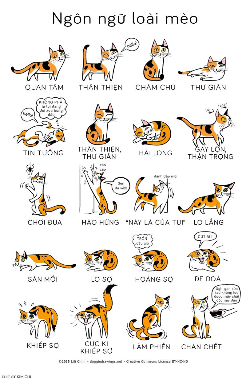 ngôn ngữ loài mèo.